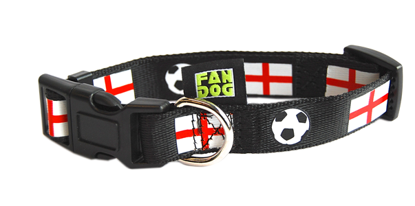 cat collar – dog collar